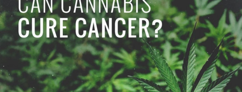 CBD For Cancer