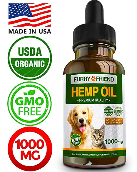 Best CBD Oils for Dogs - (MUST Read Before Buying)