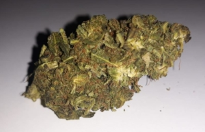 CBD Buds 2