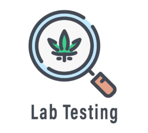 Lab Testing Icon