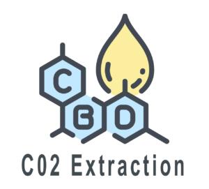 Icon_002_0000_C02 Extraction