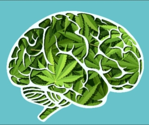 CBD For Brain Health