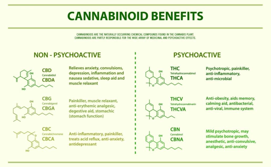 Cannabinoids THC vs CBD