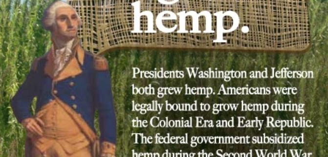 Washington And Jefferson Grew Hemp